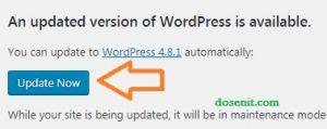 update wordpress ke versi terbaru 2